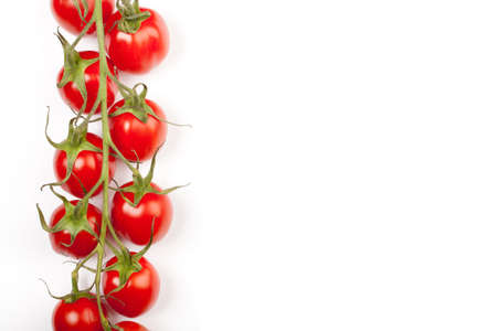 some cherry tomatoes in a horizontal line on the stem leaving copyspace Stock Photo - 9312732