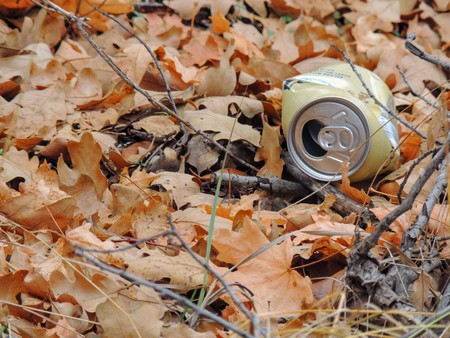 Litter, trash in the forest in late Fall on hiking trails through trees on the Yellow Fork and Rose Canyon Trails in Oquirrh Mountains on the Wasatch Front in Salt Lake County Utah USA.