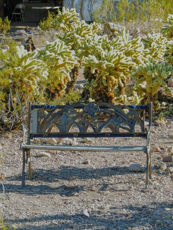 Old metal bench rusting on the ground among jumping cactus in the Arizona desert in deserted ghost mining town.
