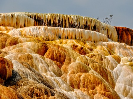 Varied Hot Spring Thermal Colors - Mammoth Hot Springs is Yellowstones only major thermal area located well outside the Caldera. The terraces change constantly--sometimes noticeable within a day Reklamní fotografie