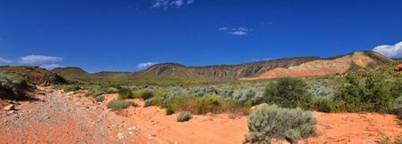 Views of Red Mountain Wilderness and Snow Canyon State Park from the  Millcreek Trail and Washington Hollow by St George, Utah in Spring bloom in desert. United States.