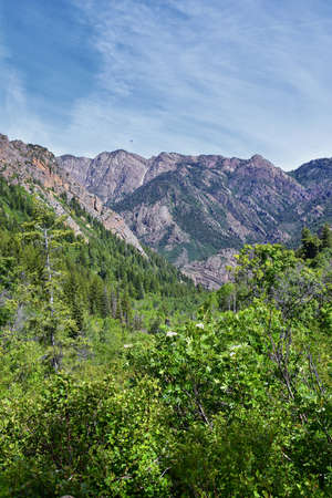 Lake Blanche forest and mountain landscape views from trail. Wasatch Front Rocky Mountains, Twin Peaks Wilderness,  Wasatch National Forest in Big Cottonwood Canyon in Salt Lake County Utah. United St