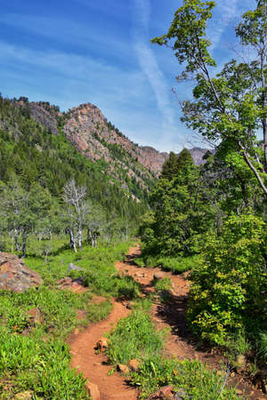 Hiking Trail to Lake Blanche forest and mountain. Wasatch Front Rocky Mountains, Twin Peaks Wilderness, Wasatch National Forest in Big Cottonwood Canyon in Salt Lake County Utah. United States.