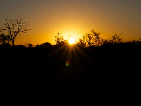 veld: Another stunning sunset in the South African Veld Stock Photo