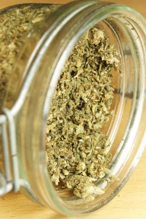Weed, Colorado Marijuana Grunge Detail and Background Stock Photo - 25059017