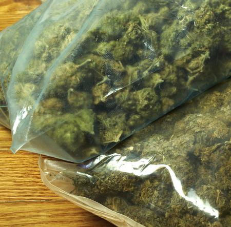 Weed, Medical Marijuana Grunge Detail and Background Imagens