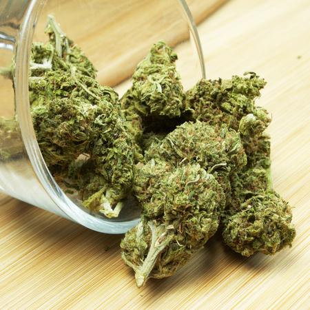 Onkruid, medische marihuana Grunge Detail en Achtergrond