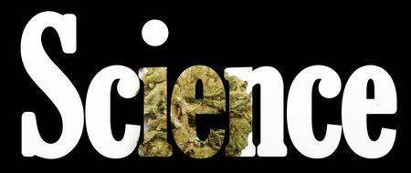 Weed, Medical Marijuana Grunge Detail in science word