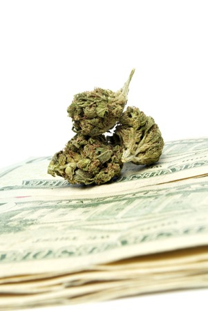 Marijuana and Cannabis Legalization, Objects on White , Medical and Recreational Weed photo