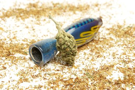 Marijuana and Cannabis on a White Background