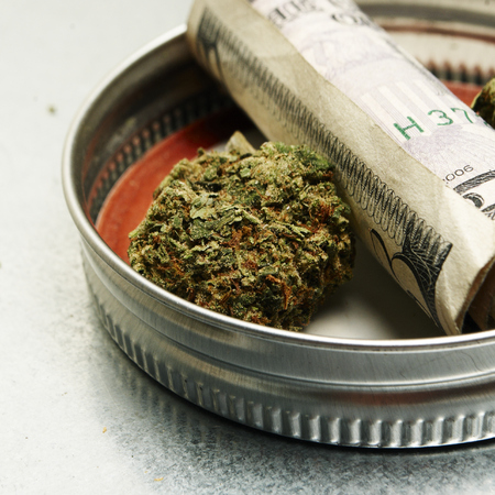 Legal Pot or Weed from the Buds of the Cannabis or Marijuana Plants Stock Photo