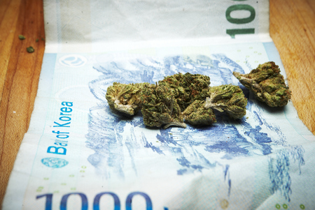 bud weed: Marijuana and Cannabis Buds and Money, Drug Business American and Foreign Currency Stock Photo