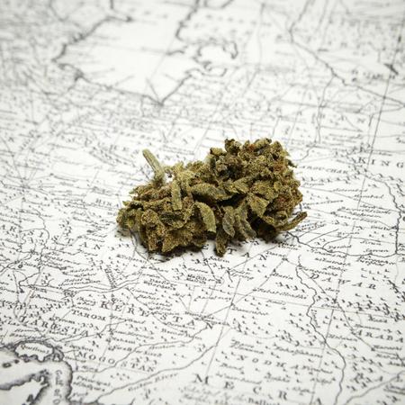 intoxication: Marijuana and Cannabis Stock Photo