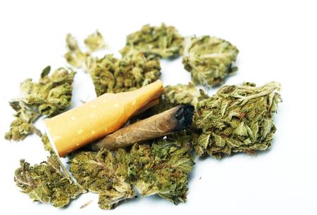 Marijuana and Cannabis Stok Fotoğraf