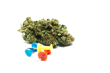narcotic: Marijuana and Cannabis Stock Photo