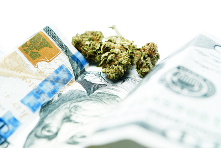 Marijuana and Cannabis Stock Photo