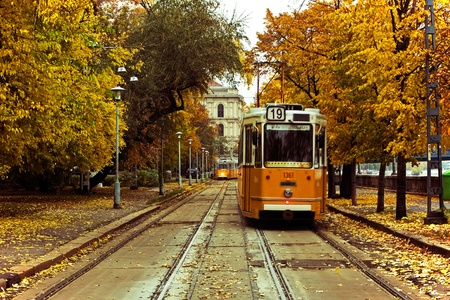 Trams in Budapest in Autumn