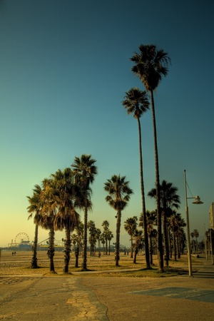 California Summer, Santa Monica, LA Stock Photo