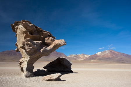 Arbol de Piedra - The Rock Tree in Uyuni, Bolivia