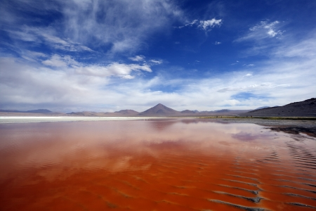 Amazing Laguna Colorada, Bolivia
