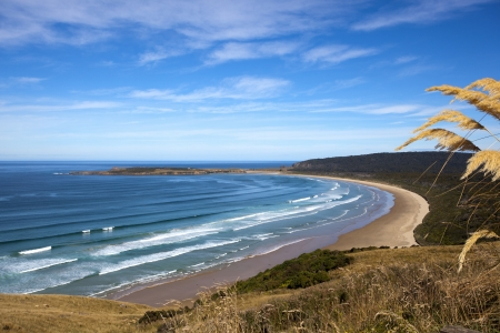 south pacific: New Zealand Coastline Beach