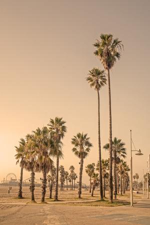 santa monica: Beach Summer - Los Angeles, California Stock Photo