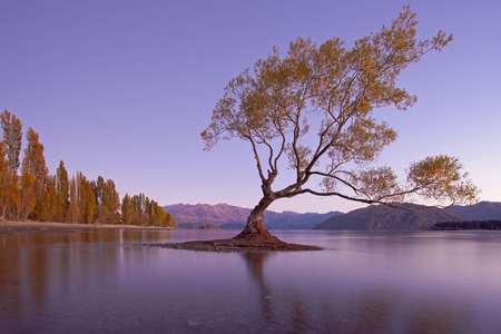 lake house: Colourful Lake Wanaka, New Zealand Stock Photo