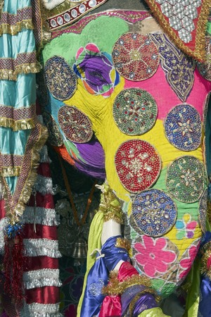 Decorated elephant at the annual elephant festival in Jaipur, India Standard-Bild