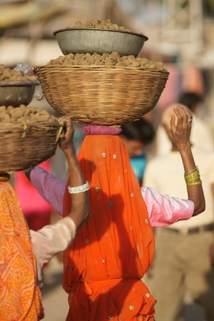 droppings: Indian lady carrying basket full of camel droppings on her head at the Pushkar fair Rajasthan India. Stock Photo