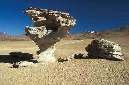 arbol: Escultura de piedra natural ARBOL DE PIEDRA piedra o un �rbol de gran altura en el Altiplano boliviano, Bolivia, Am�rica del Sur