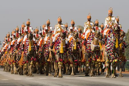 Delhi, India - January 23, 2008: Soldiers of the Indian Army Camel Corps riding down the Raj Path in preparation for the Republic Day Parade.