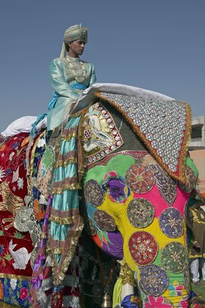 Jaipur, India - March 21, 2008: Decorated elephant and mahout at the annual elephant festival in Jaipur, India