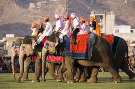 Jaipur, Rajasthan, India - March 3, 2007: Group of elephants playing polo at the Elephant Festival in Jaipur, Rajasthan, India