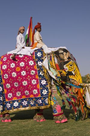 Jaipur, India - March 21, 2008: Decorated elephant at the annual elephant festival in Jaipur, Indi