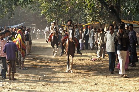Sonepur, India - November 28, 2007: Men test riding horses along a track in the woods at the Sonepur livestock fair, India Stock Photo - 7148500