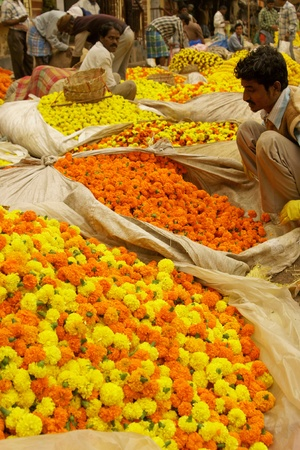 Calcutta, India - December 18, 2008: Man selling flowers at the flower market in the shadow of the Haora Bridge in Kolkata, West Bengal, India