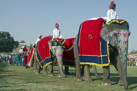 Jaipur, India - el 21 de marzo de 2008: Elefantes en un desfile en el festival anual de elefante en Jaipur, India Foto de archivo - 8491463
