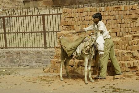 Fatehpur Sikri, India - el 7 de abril de 2009: Hombre indio cargando ladrillos en sacos crudos montado en la parte posterior de un burro en Fatehpur Sikri, Uttar Pradesh, India. Foto de archivo - 8491459