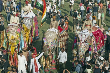 Jaipur, India - March 21, 2008: Group of decorated elephants amongst a crowd of people at the annual elephant festival, Jaipur, India