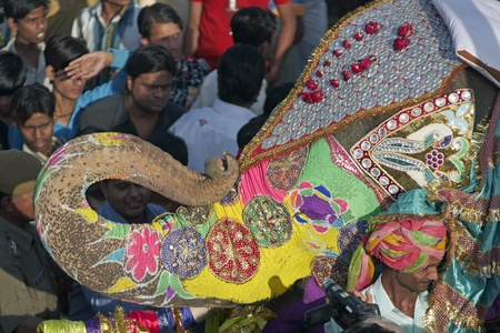 Jaipur, India - March 21, 2008: Decorated elephant saluting with its trunk at the annual elephant festival, Jaipur, India Stock Photo - 8500447