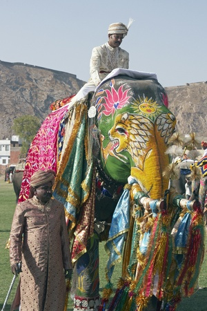 Jaipur, India - March 21, 2008: Mahout riding a decorated elephant at the annual elephant festival, Jaipur, India