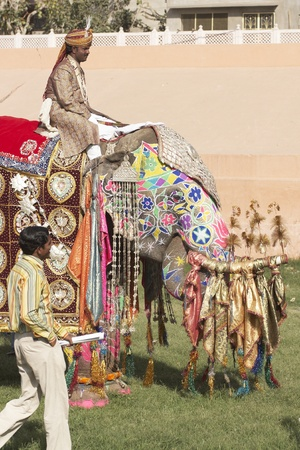 Jaipur, India - March 21, 2008: Decorated elephant at the annual elephant festival in Jaipur, India