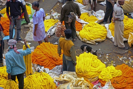 Calcutta, India - December 18, 2008: People buy and sell orange and yellow flowers and garlands at the flower market in Calcutta, West Bengal, India.