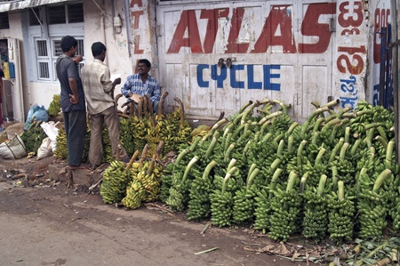 Mysore, Karnataka, India - June 26, 2007: Bunches of green bananas stacked on an Indian street.