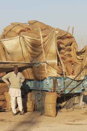 Nagaur, Rajasthan, India - February 15, 2008: Man standing by a trailer filled with sacks of chillies at one of India's largest chili market at Nagaur, Rajasthan Stock Photo - 8525919