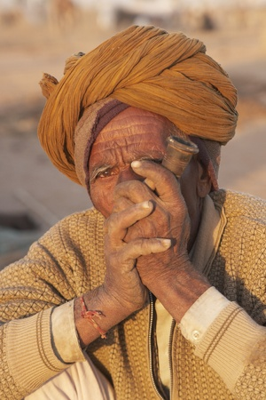 india cow: Nagaur, Rajasthan, India - February 15, 2008: Old Indian man in a turban smoking a pipe at the Nagaur Cattle Fair in Rajasthan, India Editorial