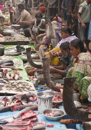 Calcutta, India - December 18, 2008: Busy fish market on a street in the Chowringhee area of Kolkata, West Bengal, India
