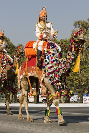 saddle camel: Delhi, India - January 23, 2008: Commander of the Indian Army Camel Corps riding down the Raj Path in preparation for the Republic Day Parade Editorial