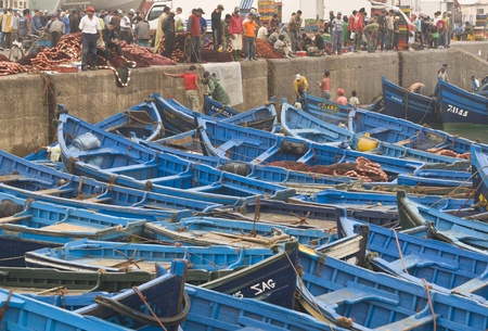 inshore: Essaouira, Morocco - August 29, 2009: Fish being offloaded from a fleet of small blue inshore fishing boats in the fishing village of Essaouira, Morocco. Editorial