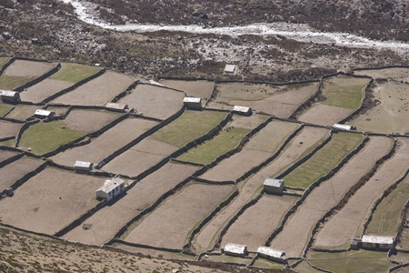 Traditional mountain farmhouses and fields in the village of Dingboche (4410 Metres) in the Himalaya Mountains of Nepal Stock Photo - 8669016